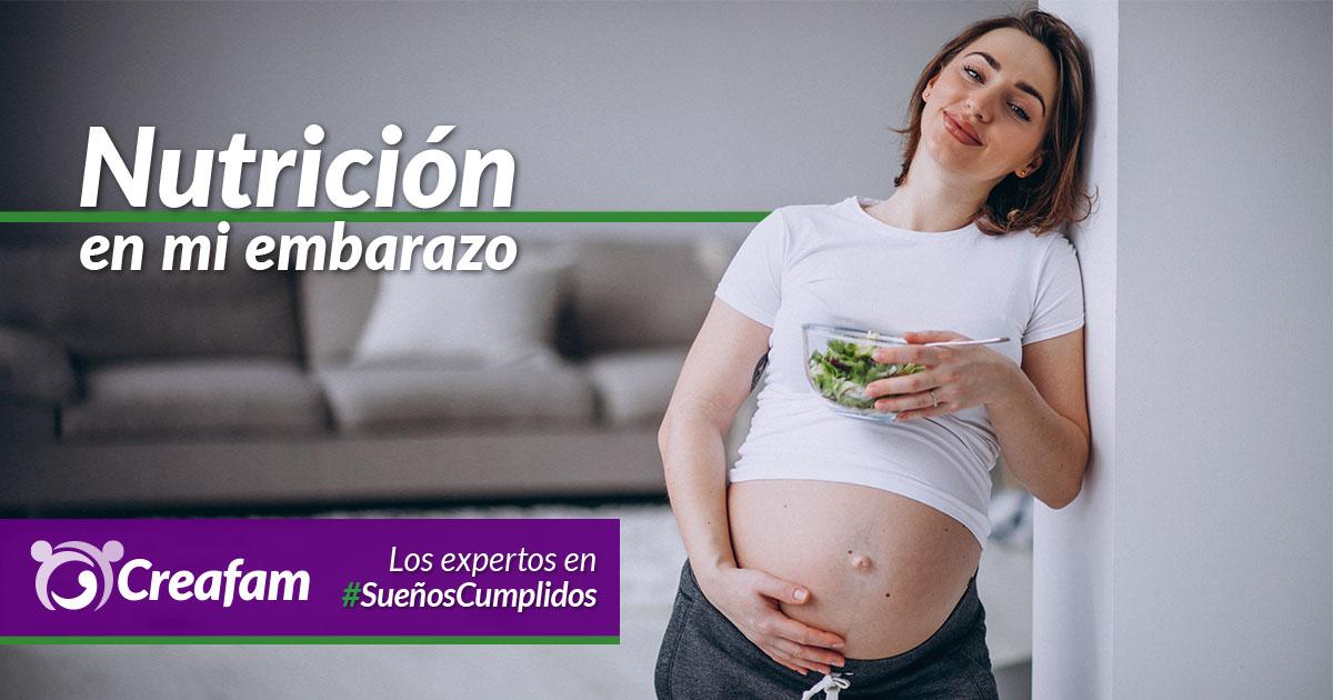 Nutrición en mi embarazo