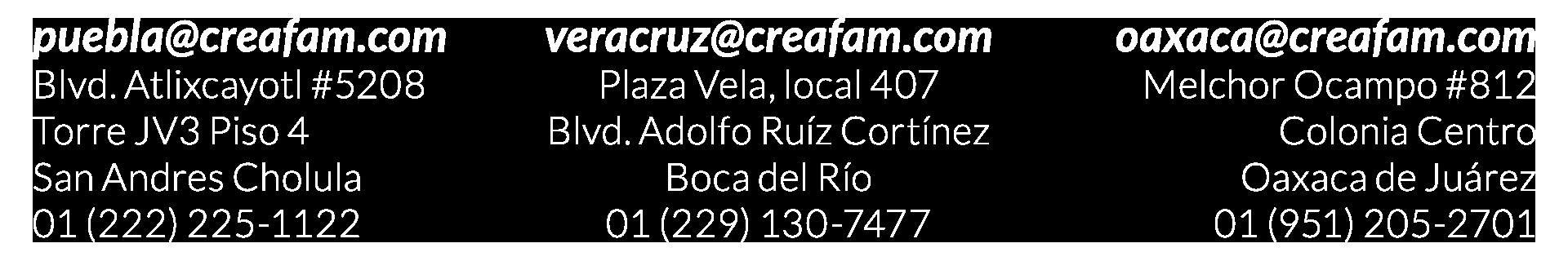 Creafam Oaxaca Puebla Veracruz