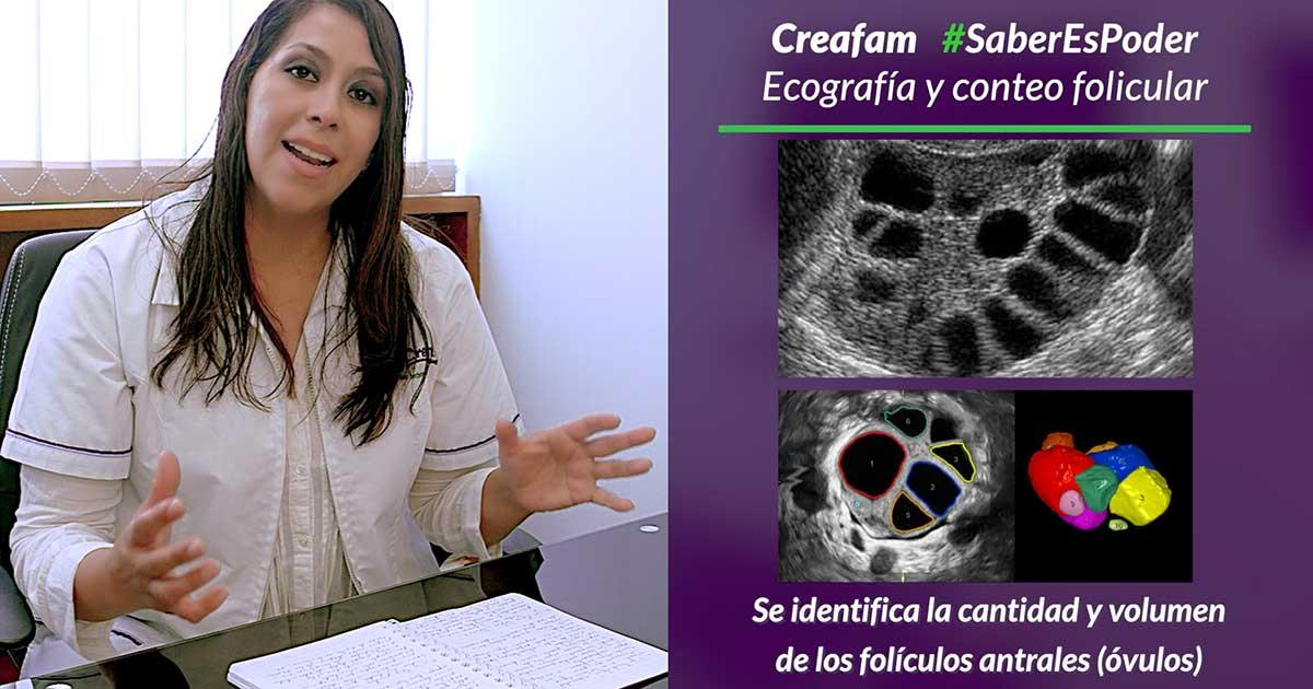 Consulta de fertilidad